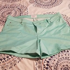 Celebrity Pink Shorts Mint Green Size 20